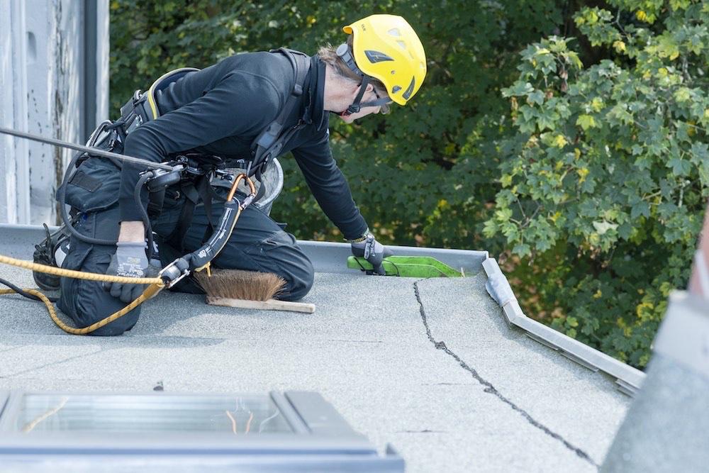 Dachrinnenreinigung-Hausmeisterdienste-Hamburg-Dach